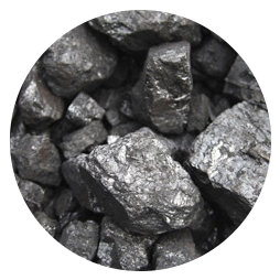Coal (24%)